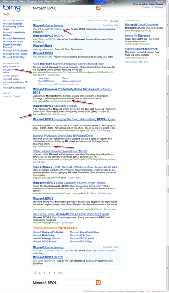"Bing Results for ""Microsoft BPOS"""