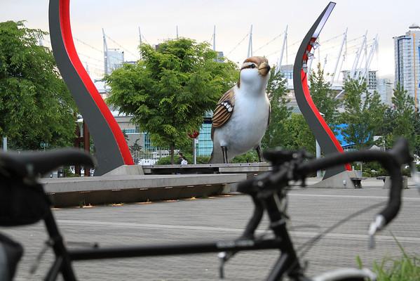 A giant bird!