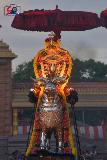 நல்லூர் கந்தசுவாமி ஆலய 15 ம் நாள் உற்சவம் 8