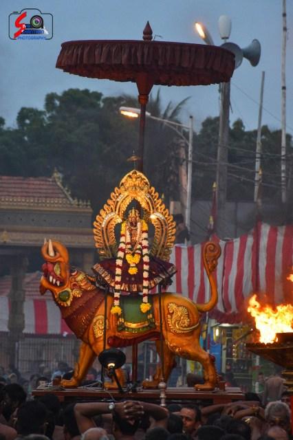 நல்லூர் கந்தசுவாமி ஆலய 16 ம் நாள் உற்சவம் 7