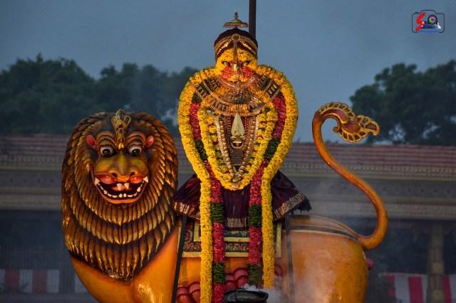 நல்லூர் கந்தசுவாமி ஆலய 16 ம் நாள் உற்சவம் 10