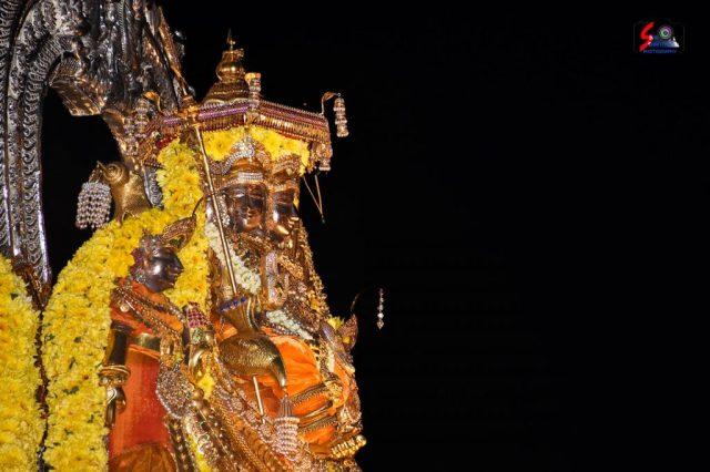 நல்லூர் கந்தசுவாமி ஆலய 18 ம் நாள் உற்சவம் 17