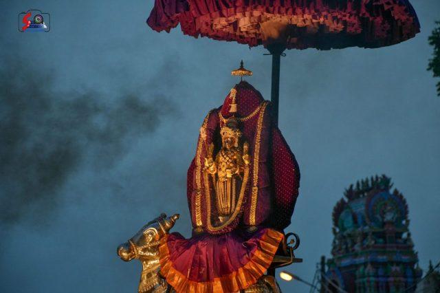 நல்லூர் கந்தசுவாமி கோவில் கந்தசஷ்டி உற்சவம் – 3ம் நாள் 11