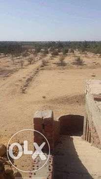 ارض 27000 م للبيع او المشاركه بطریق مصر اسكندريه الصحراوي فرصه بجد