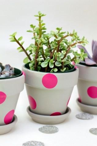 plantsdiy
