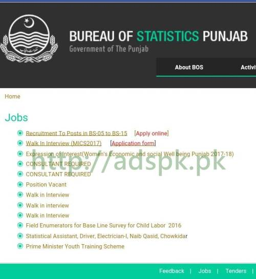 Bureau of Statistics Punjab Government of the Punjab Jobs Recruitment 2017 Ready to Apply Online Now