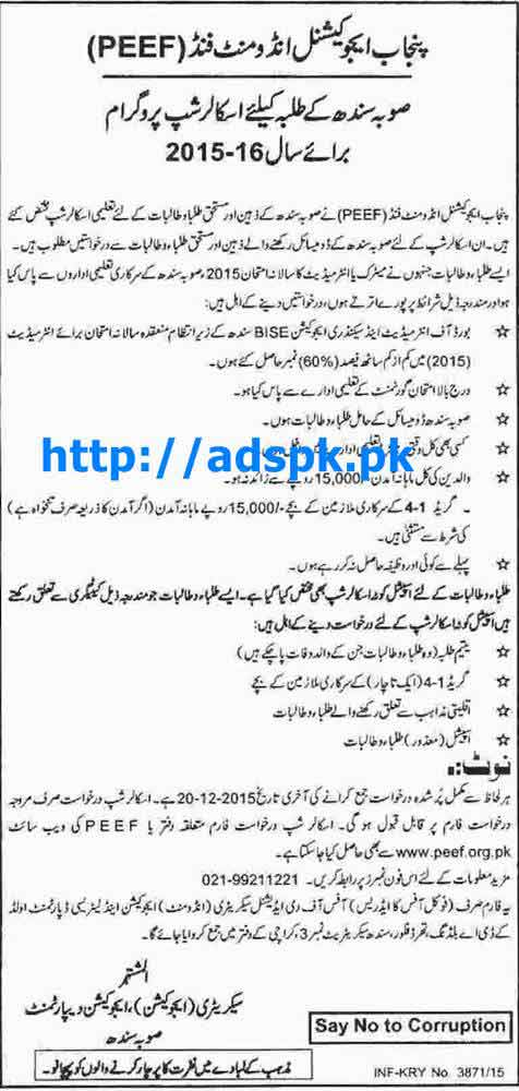 Latest Scholarship Program 2015-16 PEEF Punjab Educational Endowment Fund for Sindh Students Last Date 20-12-2015 Apply Now