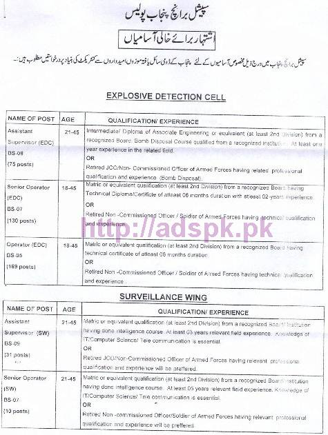 nts-new-career-excellent-jobs-punjab-police-special-branch-jobs-written-test-syllabus