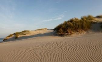 dune, matin 2