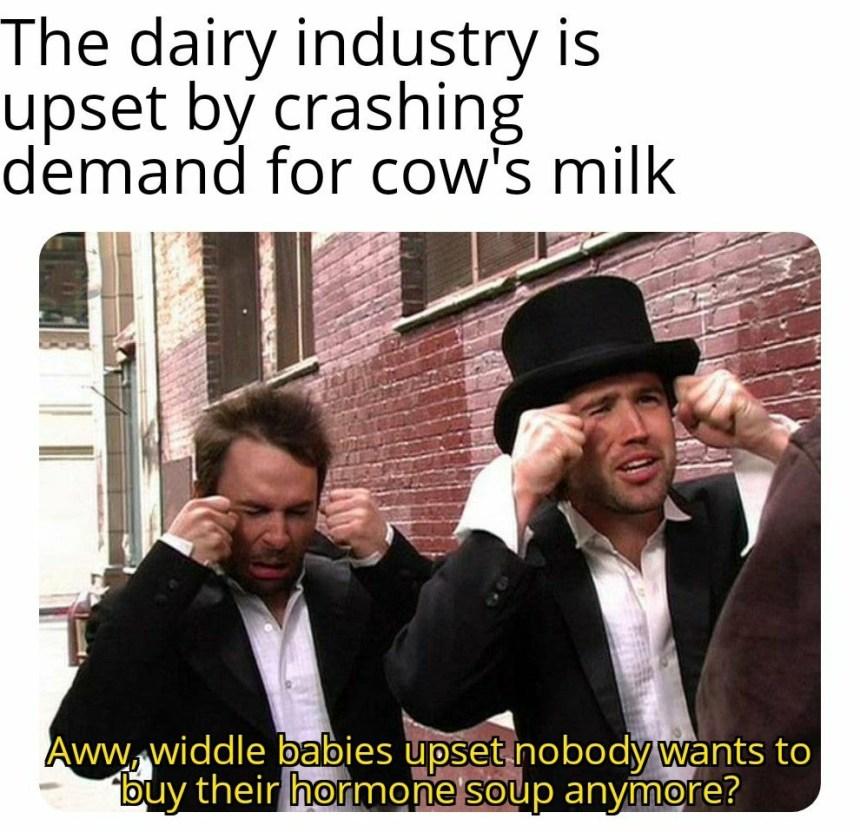 dank vegan memes