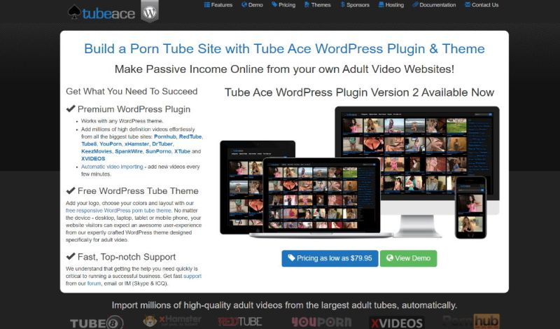 Tube Ace WordPress Plugin Theme Layout