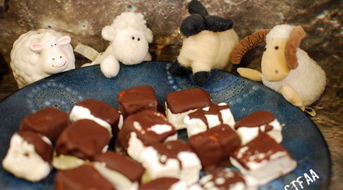 Chocolate Covered Peppermint Marshmallows with Sheep - Photo by J. Andrews