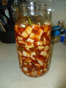Turnip combined with Korean red pepper flake mixture in jar, pressed down so there are no air pockets