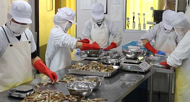 There is a Japanese seafood processing company where workers can work whenever they want.