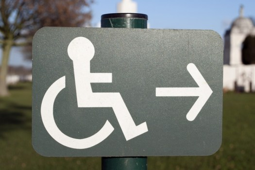 Disablity Picture