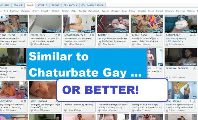 similar to chaturbate gay