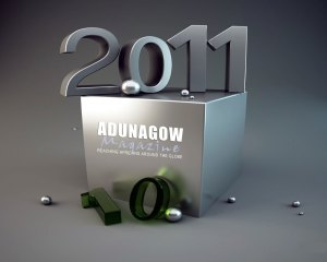 2011: The Political Year for Africa