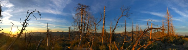 Sunset Panorama Atop Mt Mooney, Angeles National Forest