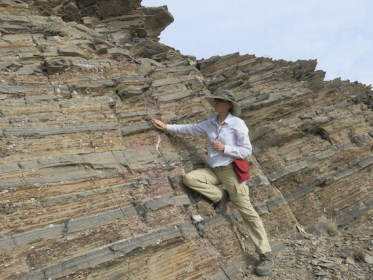 Dr. Maya Elrick, a professor in UNM's Earth and Planetary Science Department examines the strikingly rhythmic interbedding of these 380 million-year-old gray (limestone) and beige (shale) sedimentary layers that are the product of rapid (<2000 year) climate changes. The photo was taken in central Nevada near Eureka in 2014. Her research focuses on detecting ancient climate and sea-level changes in marine sedimentary rocks.
