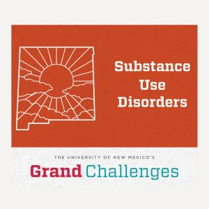 Substance Use Disorders Grand Challenge Student Scholars Program-2