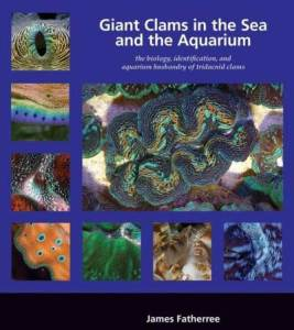 best book on clams for coral reef tank