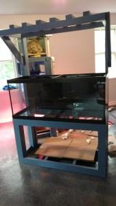 saltwater fish tank setup