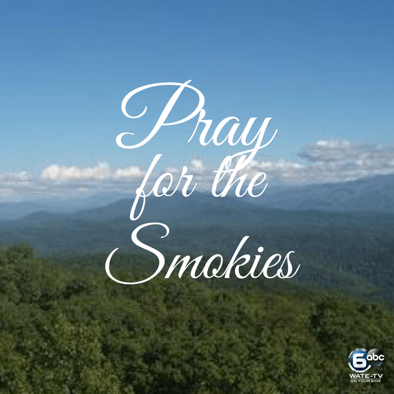 Help Families Affected by the Smoky Mountain Wildfires