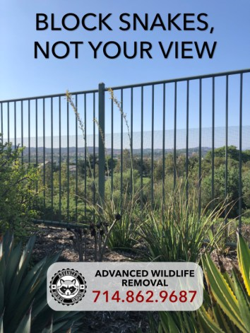 view of wildlife exclusion fence that blocks snakes from entering a garden while preserving the homeowner's beautiful view. installed by Advanced Wildlife Removal.