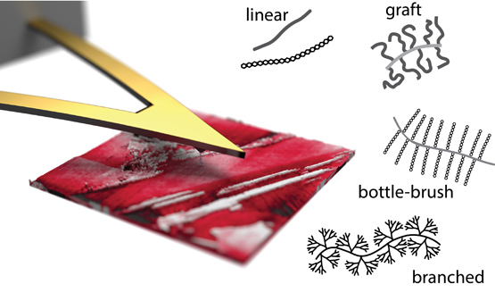 Effect of Molecular Architecture on Single Polymer Adhesion. Advances In Engineering