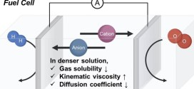 Impact solute concentration electrocatalytic conversion of dissolved gases - advances in engineering-
