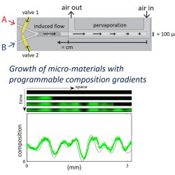 Fabrication of microscale materials with programmable composition gradients.. Advances in Engineering