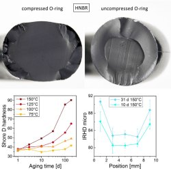 Effects of heterogeneous aging in compressed HNBR and EPDM O-ring seals. Advances in Engineering