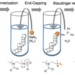 A Facile Amino-Functionalization of Poly(2-oxazoline)s' Distal End Through Sequential Azido End-Capping and Staudinger Reactions - Advances in Engineering