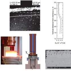 A Wide-Angle View of Shell-Mold Thermal Resistance in Steel Continuous Casting (Advances in Engineering)