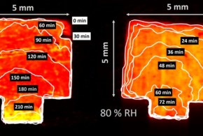 Perovskite Solar Cell Stability in Humid Air: Partially Reversible Phase Transitions in the PbI2-CH3NH3I-H2O System