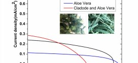 Dye-sensitized solar cells using Aloe Vera and Cladode of Cactus extracts as natural sensitizers - advances in engineering