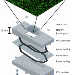 Membrane Separated Flow Cell for Parallelized EIS and CLSM to Characterize Electro-Active Microorganisms Advances in Enigneering