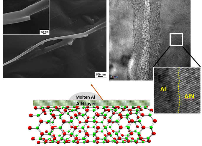 Reactive wetting and filling of boron nitride nanotubes by