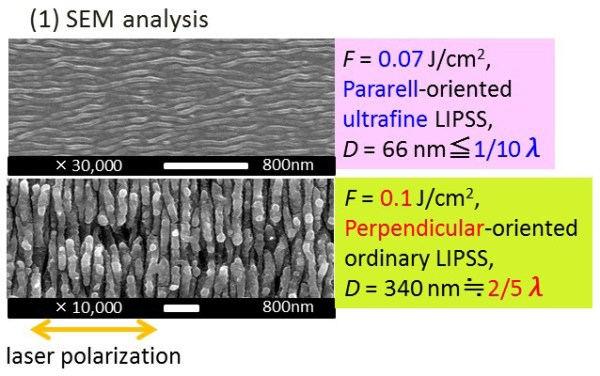 Formation of Organic Layer on Femtosecond Laser-Induced Periodic Surface Structures- Advances in Engineering