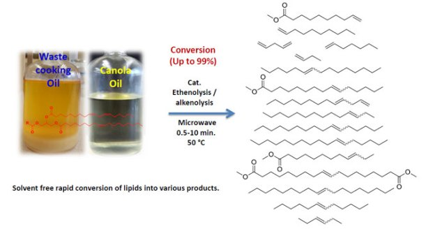 Microwave-Assisted Cross-Metathesis of Lipids under Solvent-Free Conditions-Advances in Engineering