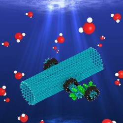 Rotating-Electric-Field-Induced Carbon-Nanotube-Based Nanomotor in Water A Molecular Dynamics Study-Advances in Engineering