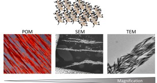 Liquid crystalline phases polymer functionalized ferri-magnetic Fe3O4 nanorods Advances in Engineering. Advances in Engineering