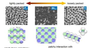 Density dependence of orientational order in one-patch particles.. Advances in Engineering