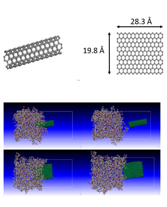polymer composites reinforced by carbon nanotubes and graphene sheet-Advances in Engineering