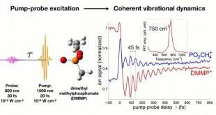 Making molecules dance: Preparing coherent states in polyatomic radical cations - Advances in Engineering
