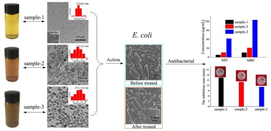 Controllable synthesis of silver nanoparticles and its size-dependent antimicrobial activities. Advances in Engineering