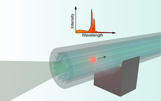 combination of optical trapping and photonic crystal fiber enables distributed whispering-gallery-mode based measurements, Advances in Engineering