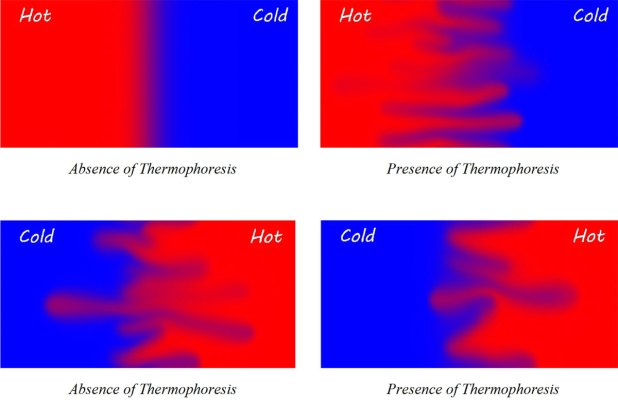 thermophoresis and Brownian diffusion on nanoparticle flows-Advances in Engineering
