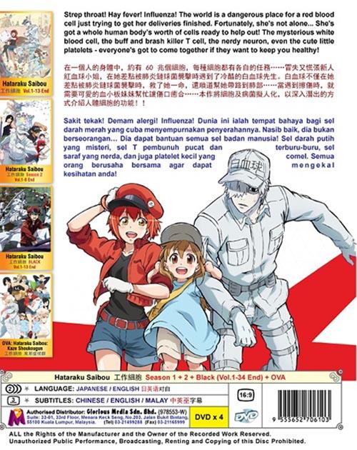 Hataraku Saibou Season 1-2 - Black Vol.1-34 End DVD
