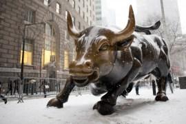Bull_20140121-winter-SamiraBouaou-2329-676x450